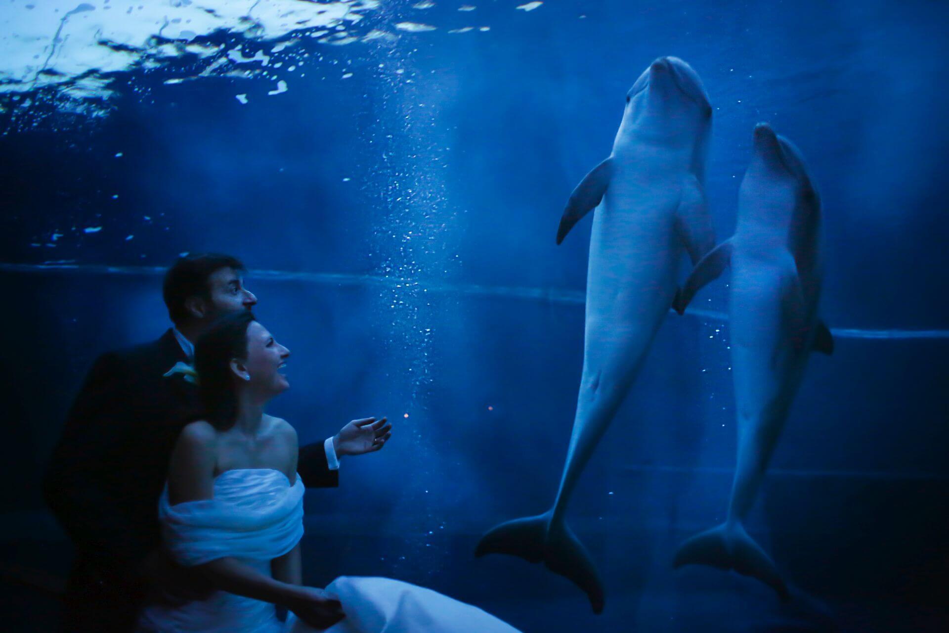 Acquario di Genova - matrimoni